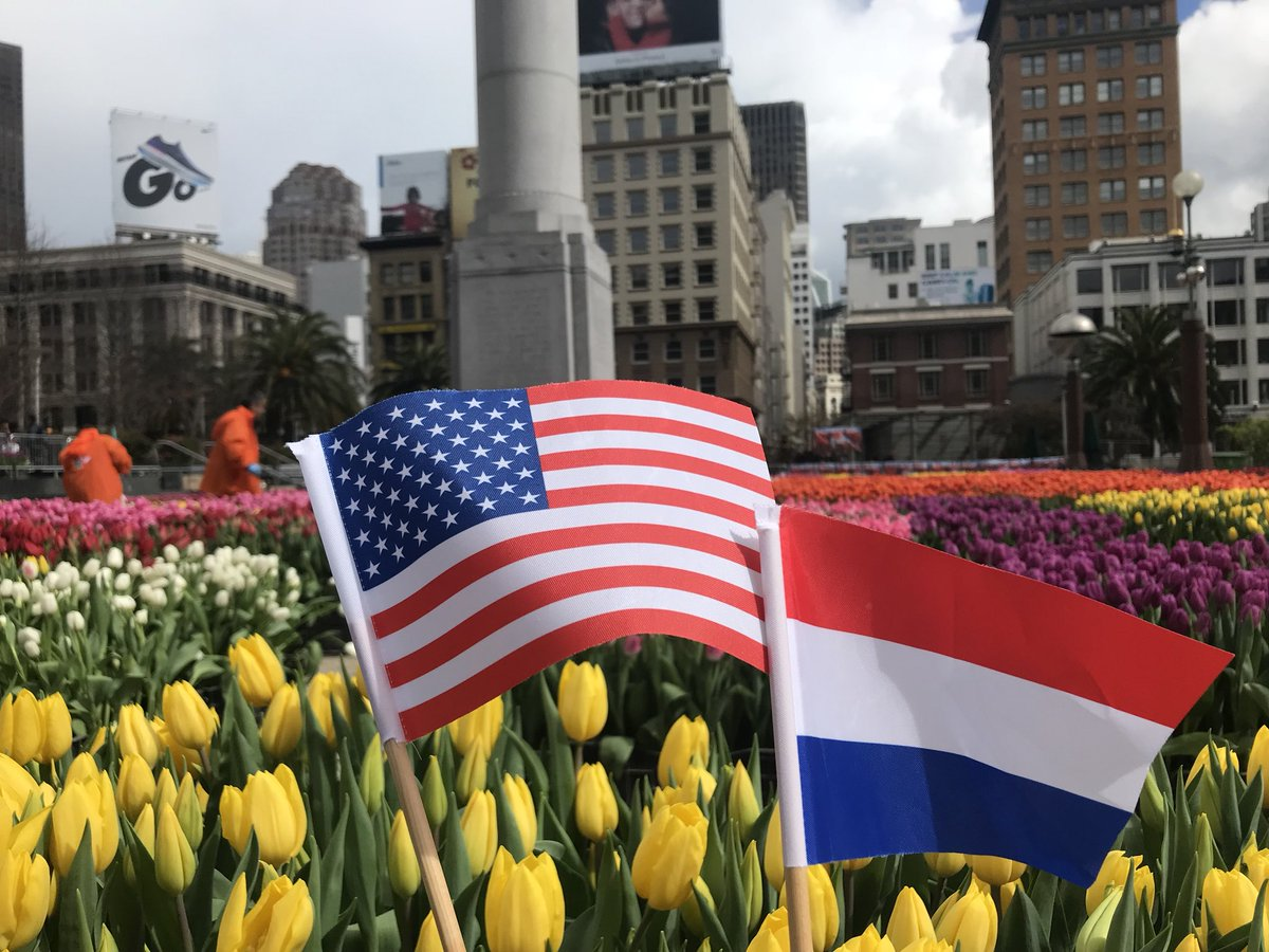 American Tulip Day coming to San Francisco