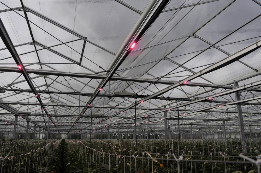 Sustainable Greenhouses