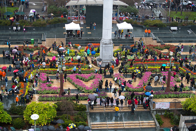100,000 free tulips turn the heart of San Francisco into a pop-up garden