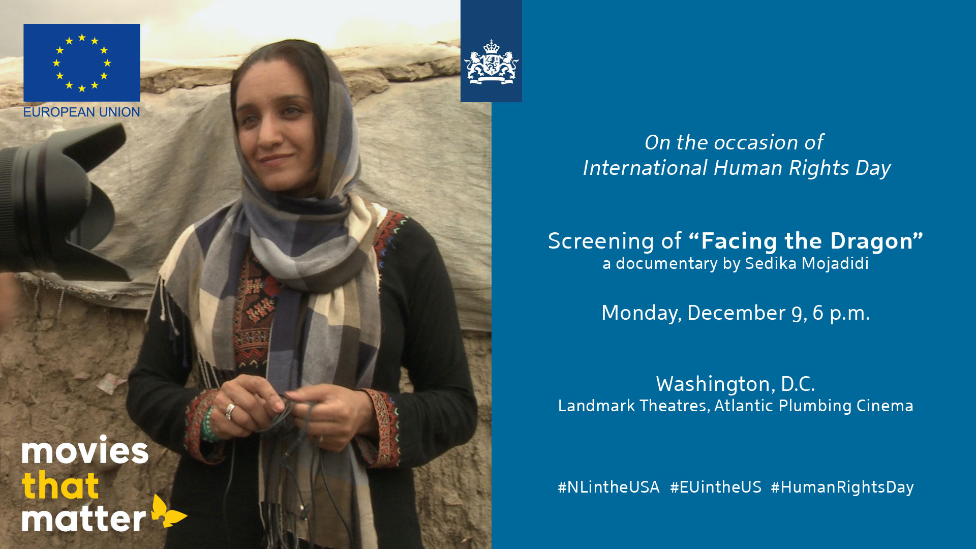 Human Rights Day: Screening of 'Facing the Dragon'